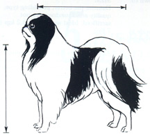 breed standard image1